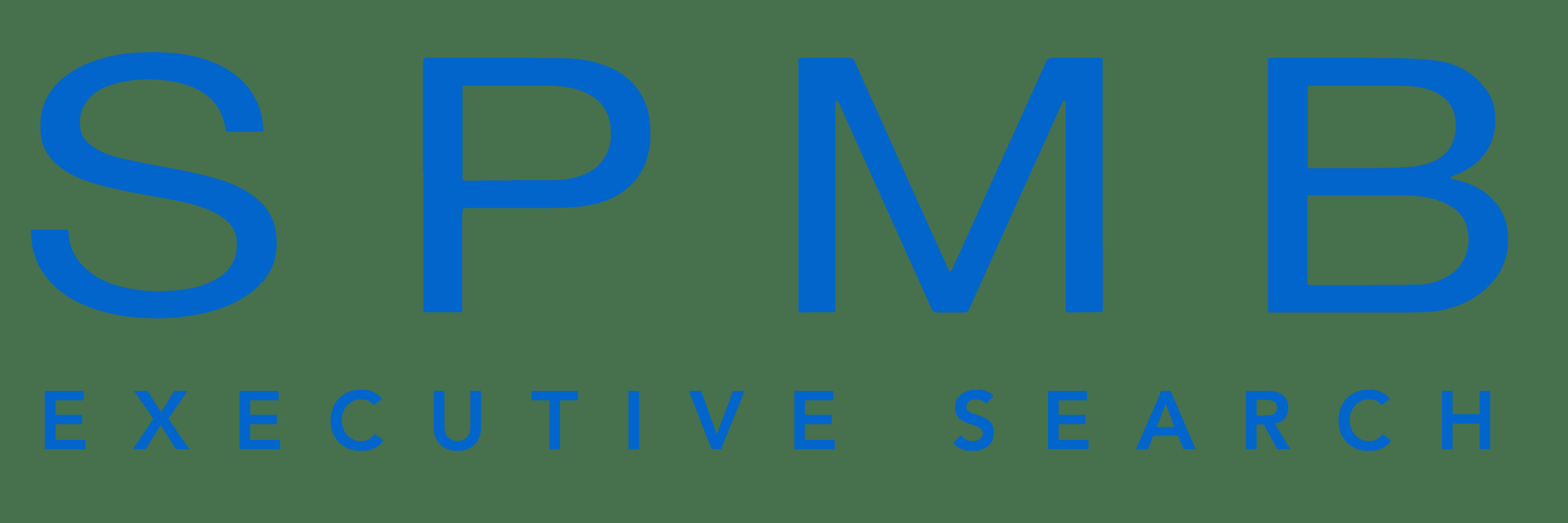SPMB Blue Text Logo